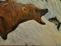 Alaska, Lachs, Arktis, Bär