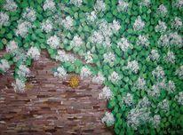 Pflanzen, Hortensien, Stadtmauer, Kletterhortensie