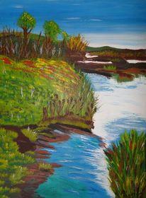 Wasser, Moor, Landschaft, Schilf