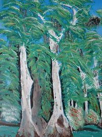 Sumpfzypressen, Pflanzen, Zypressen, Lousiana