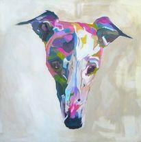 Whippet, Portrait, Tiere, Kopf