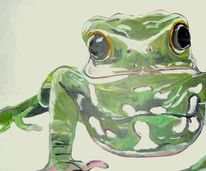 Frosch, Weiß, Kopf, Portrait
