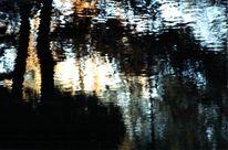 Herbst, Abstrakt, Freiburg, Reflektionen