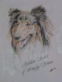 Zeichnung, Tiere, Malerei, Collie