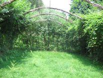 Land art, Weidenbau