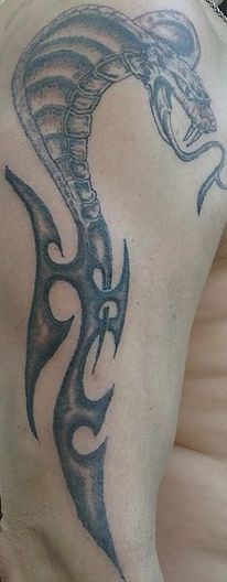 Schlange, Tribal, Tattoo,