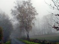 Nebel, Landschaft, Fotografie, Serie