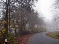 Nebel, Landschaft, Malerei, Serie