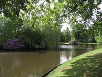 Fotografie, See, Stadtpark
