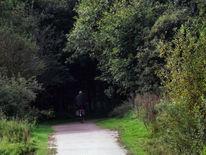 Radfahren, Fotografie, Holland, Deutschland