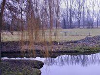 Landschaft, Wasser, Natur, Bach