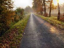 Feldweg, Herbstmorgen, Natur landschaft, Fotografie