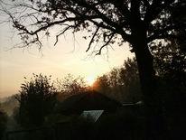 Sonnenaufgang, Herbstmorgen, Fotografie, Haus