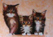 Pastellmalerei, Katzenbaby, Katze, Malerei