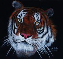 Tierwelt, Pastellmalerei, Tiger, Malerei