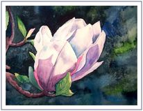 Rosa, Blau, Magnolien, Grün