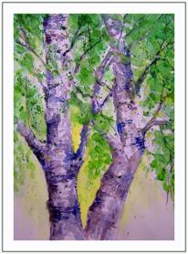 Baum, Frühlingsgrün, Birken, Frisch