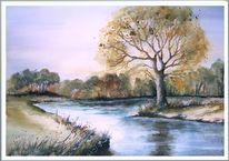 Baum, Aue, Busch, Fluss