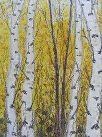 Herbst, Gelb, Baum, Birken