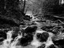 Landschaft, Wasser, Heimat, Fotografie