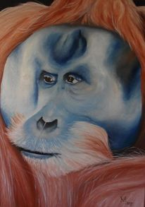 Tiere, Ölmalerei, Regenwald, Orang utan