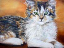 Katze tiere haustiere, Malerei, Tiere, Katze