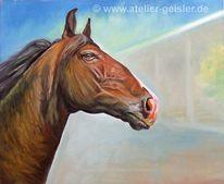 Pferdekopf, Pferde, Pferdeportrait, Malerei
