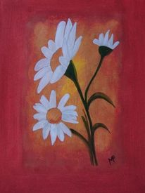 Klarheit, Margerite, Offenheit, Blumen