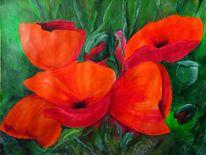 Blumen, Knospe, Mohn, Feld