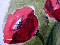 Blumen, Mohn, Aquarellmalerei, Aquarell