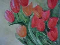 Tulpen, Blumen, Rot, Orange