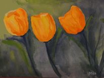 Tulpen, Gelb, Orange, Blumen