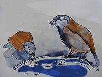 Tränke, Tiere, Vogel, Wasser