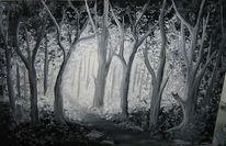 Wald, Schatten, Licht, Mystik