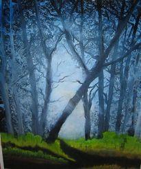Licht, Idylle, Wald, Mystik