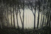 Schatten, Mystik, Licht, Wald