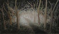 Lichteinfall, Licht, Wald, Schatten