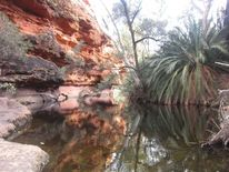 Garten eden, Australien, Outback, Kings canyon