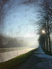 Allee, Winter, Textur, Fluss