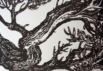Rinde, Holzschnitt, Baum, Schwarz
