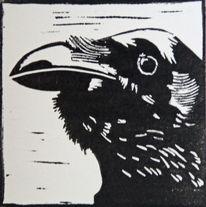 Linolschnitt, Hochdruck, Vogel, Schwarz weiß