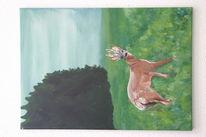 Wald, Farben, Bunt, Tierportrait