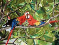 Vogel, Tiermalerei, Urwald, Pastellmalerei