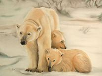 Bär, Tierportrait, Eis, Tiermalerei