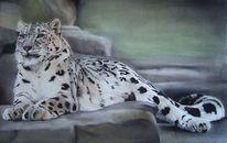 Leopard, Wild, Pastellmalerei, Katze