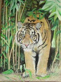 Katze, Tiermalerei, Großatzen, Pastellmalerei