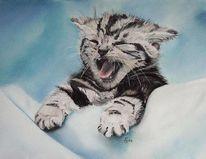 Tiermalerei, Katze, Tierportrait, Malerei