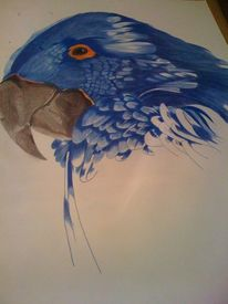 Tiermalerei, Malerei, Papagei