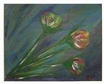 Bunt, Blau, Tulpen, Blumen