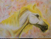 Kopf, Pastellmalerei, Pferde, Pony